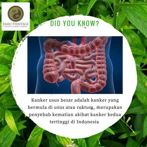 kanker usus (1)